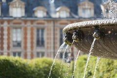 des详细资料喷泉巴黎安排vosges 免版税库存图片