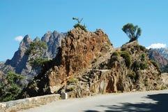 des Корсики gorges spelunca стоковое фото