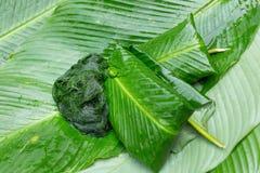 Des algues d'eau douce (espèces de Spirogyra) prêtes est employées pour faire la nourriture dans Luang Prabang, Laos ) prêt est e Images libres de droits