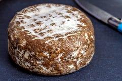 DES Alpes, queso de Tomette de Francia imagen de archivo libre de regalías