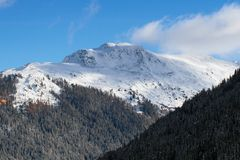 Des Alpes suisses Photo libre de droits