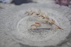 Des anneaux de mariage et une branche d'un plat argenté sont arrosés avec la neige Photos libres de droits
