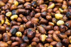 Des arachides sont rôties Images libres de droits