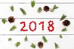 2018 des baies rouges du viburnum autour des branches de Photos stock