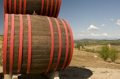 Des barils de vin Images libres de droits