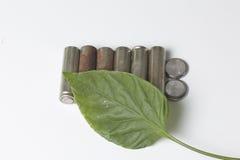 Des batteries de rebut de différents types sont dispersées Couvert de feuille juteuse verte Photo libre de droits
