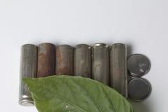 Des batteries de rebut de différents types sont dispersées Couvert de feuille juteuse verte Photographie stock