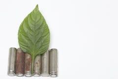 Des batteries de rebut de différents types sont dispersées Couvert de feuille juteuse verte Images stock