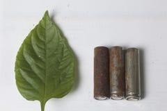 Des batteries de rebut de différents types sont dispersées Est tout près une feuille juteuse verte Photo stock