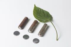 Des batteries de rebut de différents types sont dispersées Est tout près une feuille juteuse verte Photographie stock libre de droits
