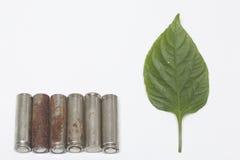 Des batteries de rebut de différents types sont dispersées Est tout près une feuille juteuse verte Photos libres de droits