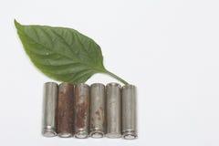 Des batteries de rebut de différents types sont dispersées Est tout près une feuille juteuse verte Photo libre de droits