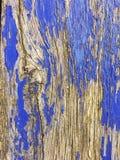 Des Beschaffenheitshintergrundes Wearthered hölzerne Farben des blauen Graus lizenzfreie stockfotografie