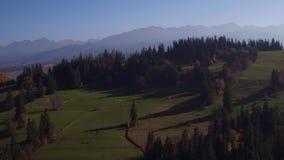 Des Brummen-panoramische Videosommer-/Herbst-4k Zakopane Tatra Berge Polen stock video footage