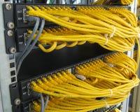 Des câbles de l'Ethernet RJ45 sont reliés au commutateur d'Internet Image libre de droits