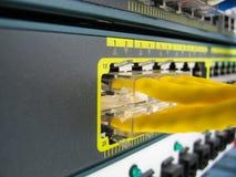 Des câbles de l'Ethernet RJ45 sont reliés au commutateur d'Internet Photographie stock libre de droits
