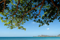 Des Caraïbes Image stock