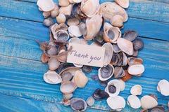 Des coquilles de mer avec un signe - merci photos stock