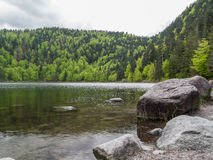 Des Corbeaux Lac Стоковое Фото