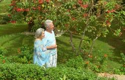 Des couples plus anciens dans le jardin exotique Photos stock