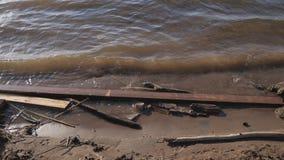 Des déchets sont nichés dans des branches sur la plage banque de vidéos