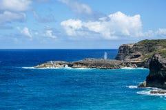 DES Falaises de trace en Guadeloupe Images stock
