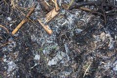 Des feuilles et les branches sèches sont brûlées image libre de droits