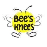 Des genoux du ` s d'abeille - inspirez et citation de motivation Lettrage drôle tiré par la main Imprimez pour l'affiche inspirée Illustration Libre de Droits