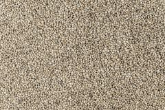 Des graines de chanvre sont dispersées comme fond Photos stock