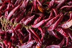 Des Hülsenpaprikas Gewürzmusterasiens würzige würzende kulinarische Basis des roten dunklen Rotwein-Hintergrundes viele Früchte lizenzfreies stockfoto