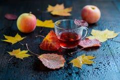 des heißen Kräutertee Herbstvitamins der Halb-Schale mit Herbstlaub und Äpfeln Lizenzfreie Stockbilder