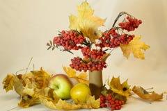 Des Herbstes Leben noch Lizenzfreies Stockfoto