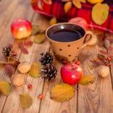 Des Herbstes Leben noch Stockfotografie