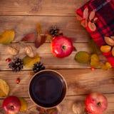 Des Herbstes Leben noch Stockbild