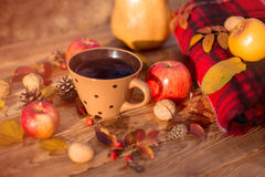 Des Herbstes Leben noch Stockfoto