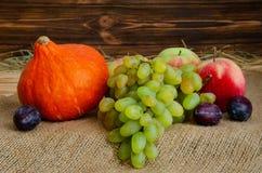 Des Herbstes Leben noch Ernte von reifen Äpfeln, von Trauben, von Pflaumen und von Kürbis Hokkaido auf dem Rausschmiß und hölzern Stockbilder