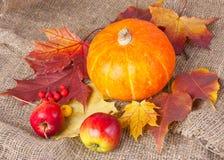 Des Herbstes Leben noch mit Kürbis Lizenzfreies Stockfoto