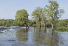 Des inondations, il a inondé le tracteur routier porte des voitures. Image libre de droits