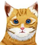 Des Katzen-Kopfes der getigerten Katze blaues Auge Stockbild