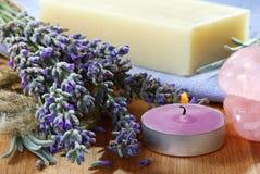 Des Lavendels Leben noch. Stockbilder