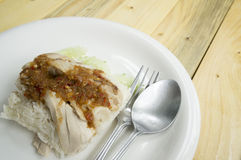 Des leeren asiatisches Lebensmittelkonzept Soßenfleisches der Hühnerreissuppe Lizenzfreie Stockfotos