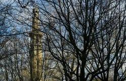 Des Leuchtturmes Baumzweige zwar Stockfoto