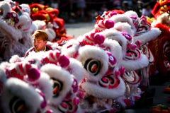 Des mouvements fondamentaux chinois de danse de lion peuvent être trouvés en arts martiaux chinois photographie stock libre de droits