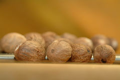 Des noix de muscade Photographie stock libre de droits