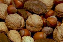 Des noix plus mélangées sur le bleu Image libre de droits