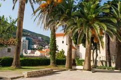 Des palmiers sur le fond des bâtiments de la vieille ville sont faits en pierre avec un toit carrelé rouge images stock