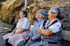 Des personnes galiciennes plus âgées consacrées au travail dans le domaine parlant heureusement dans la province d'Orense, Galici Photographie stock libre de droits