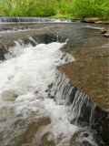 Des Plaines Conservation περιοχή Ιλλινόις Στοκ εικόνα με δικαίωμα ελεύθερης χρήσης