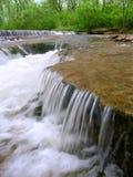 Des Plaines naturvårdsområde Illinois Royaltyfri Foto