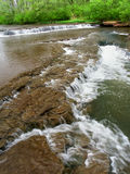 Des- Plainesnaturschutzgebiet Illinois Stockbilder